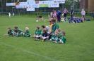 G-Junioren Sommerturnier 2014_4