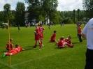 E-Junioren Sommerturnier 2014