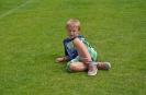 G-Junioren Sommerturnier 2014_1