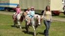 Kinderfest und Kranzniederlegung 2014_5